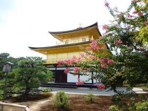 金閣寺と花